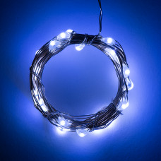Fairy Lights - Cool White (2.5m)